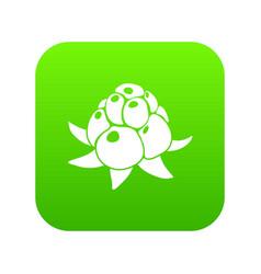 wild raspberry icon green vector image