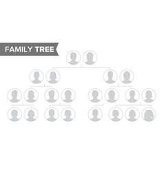 genealogical tree template family history vector image