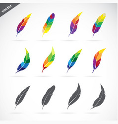 group of feathers icon design on white background vector image vector image