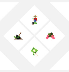 Flat icon sow set of plant man packet and other vector