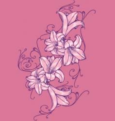 flower tulip vector image