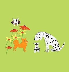 funny and cute dog with flower on green vector image