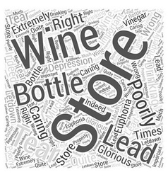 Storing And Caring For Wine Word Cloud Concept vector