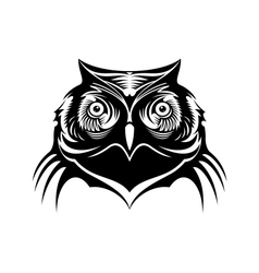 Head of a wise old owl vector image vector image