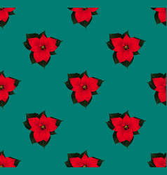 Red poinsettia seamless on green teal background vector