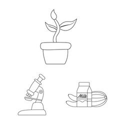 design of genetic and plant icon vector image