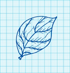 drawing of leaves on graph paper vector image