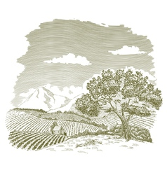 Mountain Farm Field Drawing vector