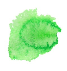 Green watercolor spot vector image