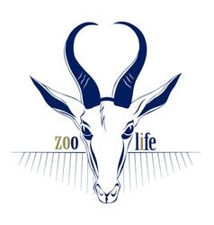 antelope deer head icon vector image vector image