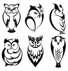 Isolated owl birds in tattoo style vector image vector image
