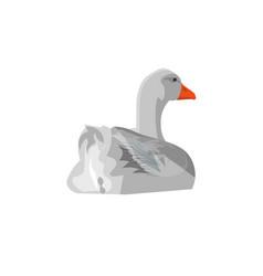 Grey goose swimming vector