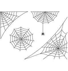Halloween spider web and spider isolated on white vector