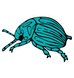 Ink beetle vector