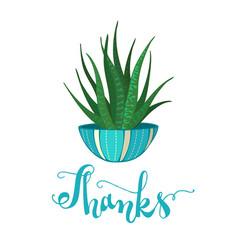zebra cactus vector image
