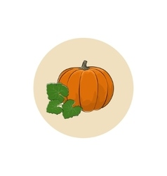 Icon of a Ripe Orange Pumpkin vector
