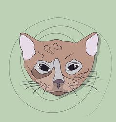 portrait of a cat on a background vector image