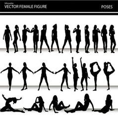 female figures vector image