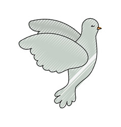 pigeon peace flying in side view on color crayon vector image vector image