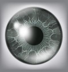human eye iiris close up healthy medical vector image