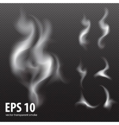 white smoke on transparent black background Set vector image