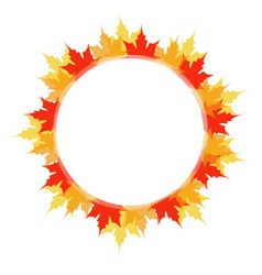 Artwork or frame with red and yellow maple leaves vector image