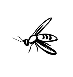 Bee wasp mosquito vector