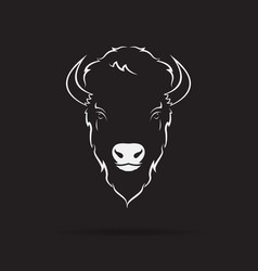 buffalo head design on black background wild vector image