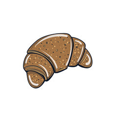croissant vector image