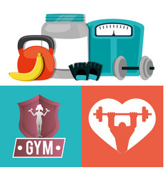 gym card fitness sport weight fruit vector image