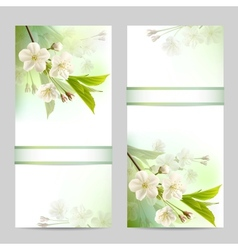 Set of spring banners vector image