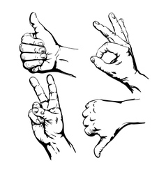 Set of Symbol Hands vector image