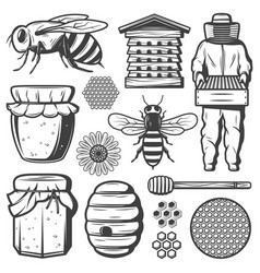 Vintage honey elements collection vector