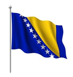 Flag of Bosnia and Herzegovina vector image vector image