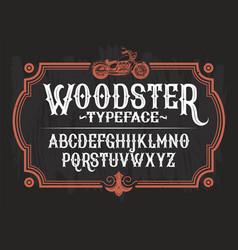 a vintage font latin vector image