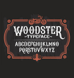 a vintage font the latin vector image