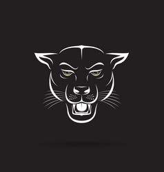an angry panther head on black background wild vector image