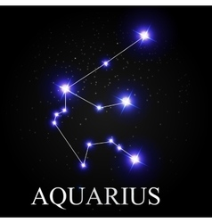 Aquarius Zodiac Sign Stars on the Cosmic Vector Images (71)