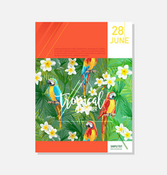 brochure template tropical parrots graphic vector image