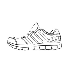 hand drawn fashion sneakers vector image