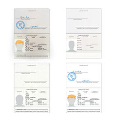 International passport set vector
