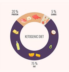 ketogenic diet diagram vector image
