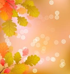 Oak Tree Leaves of Autumn vector