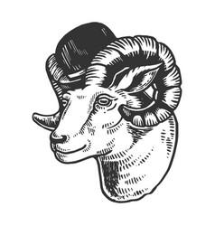 ram animal in bowler hat engraving vector image