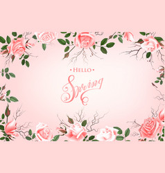 hello spring background with roses hand drawn vector image vector image