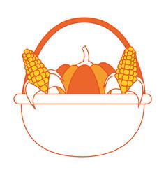 pumpkin and corns design vector image