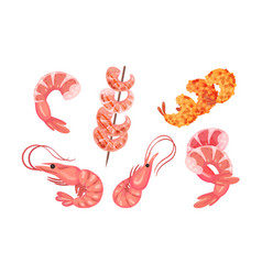Appetizing snacks with shrimp or prawn like canape vector
