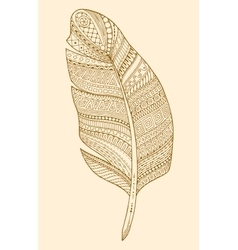 Artistically drawn stylized feather on a vector image