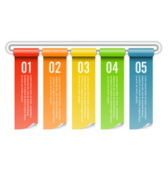 Banner rolled infographics five options template vector