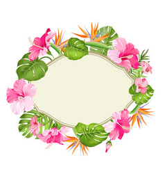 Beautiful card with a wreath tropical vector